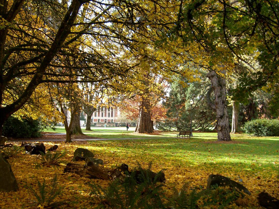 Oregon State University - 30 Online Bachelor's in Political Science