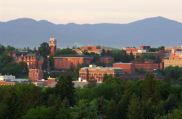 Washington State University - 30 Online Bachelor's Criminal Justice