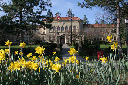 Southern Oregon State University - Online Bachelor's in Special Education