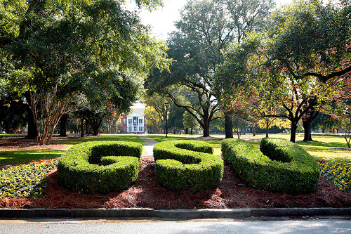 Georgia Southern University - Online Bachelor's Degrees In Economics
