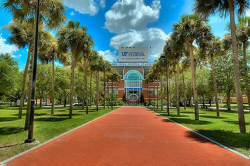 university-of-florida-online-bachelors-degrees-in-sport-management