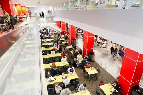 northeastern-university-online-bachelors-degrees-in-finance
