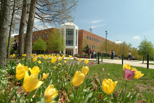 George Mason University - Online Bachelor's in Information Technology