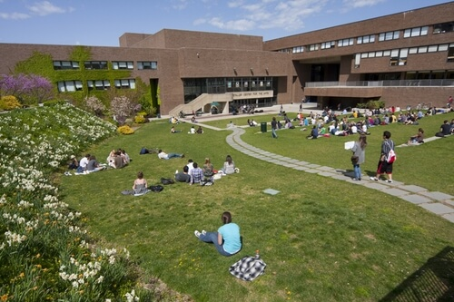 Stony Brook University - Online Bachelor's in Electrical Engineering