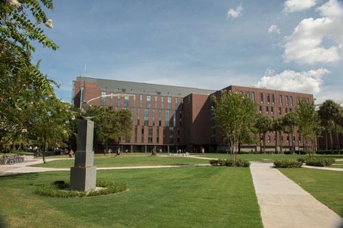 Loyola University - Online Bachelor's in Nursing (BSN)
