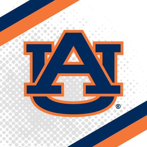 Auburn University - 20 Best Online Bachelor's in Computer Science 2018