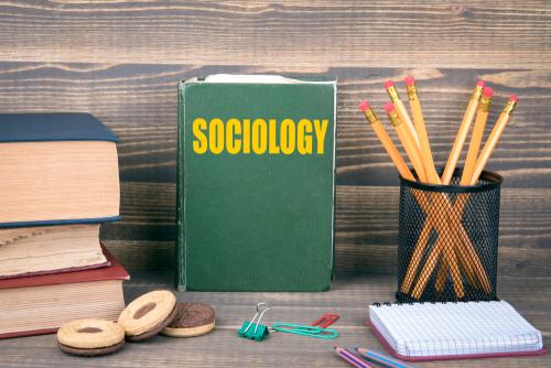 30 Best Bachelor's in Sociology Online Degrees