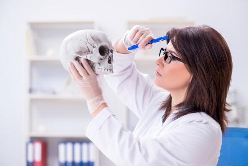 Online Bachelor's in Anthropology Degree: 30 Best