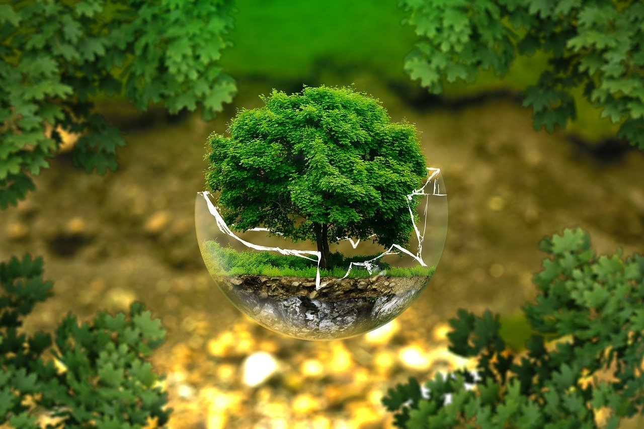 environmental science and conservation