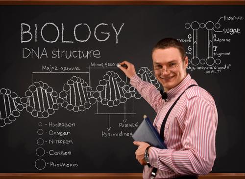 bio teacher