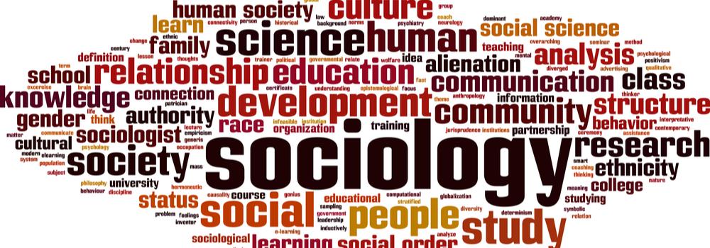 sociology internship